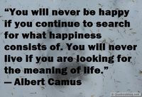Searching for happiness quote
