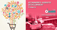 Ecommerce Website Development.jpg
