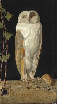 William James Webbe (fl.1853-1878), The White Owl, 'Alone and warming his five wits, The white owl in the belfry sits,' signed with monogram and dated '1856' (lower left),