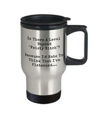 Feisty bitch dirty rude vulgar 14 oz stainless steel travel mug gag gift| batchelor party |batchelorette party | $20.95