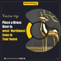 To Become more energetic and active, place a brass deer in West-North-West zone. for more tips- www.bricksnwall.com #VastuTip #TipsForYourHome #RealEstateAdvisor #RealEstateTips #RealEstateInvestment #HomeDecor #HomeInterior #WeAreHereToAdviseYou #Brick...
