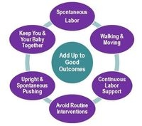 Lamaze International : Professional Resources : Healthy Birth Practices Tools