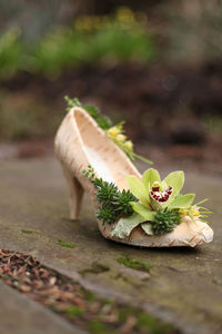 birch bark floral shoe