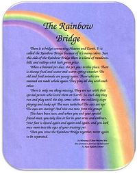 The Rainbow Bridge... For my beloved cat who passed away today. I hope you are at peace and know that I loved you so much.