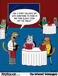 Cats at the restaurant funny cartoon