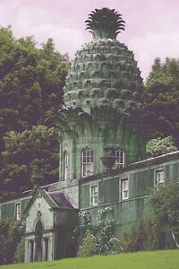The Dunmore Pineapple in Dunmore, Scotland. Built by John Murray in 1761 as a birthday present for his wife Susan.