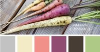 Carrot Tones - http://design-seeds.com/index.php/home/entry/carrot-tones