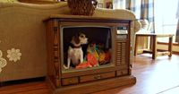 A huge old console television, acquired for $4 at a Habitat for Humanity ReStore, gets repurposed as a sweet dog bed. Well done. To DIY, see Fried Okra blog. Reminds me of this computer monitor turned into a smaller pet bed.  Check out other pet beds a...