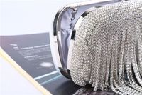 Women Silver Elegant Evening Bag