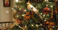 The experts at HGTV.com share Christmas tree themes to help you decorate your home for the holidays.