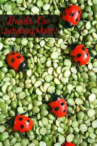 Practice counting, comparing, and addition with this ladybug math game for toddlers and preschoolers.