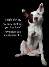 """whoever said money cant buy happiness never paid an adoption fee 