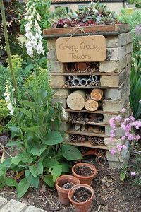 Garden designer and blogger Dawn Isaac's step-by-step guide to creating your own insect hotel